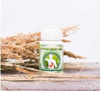 Продукт кисломолочный сухой «Курунговит ЖКТ», таблетки, 60 шт