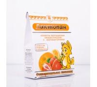 Конфеты обогащенные пробиотические «Лактопан», 70 г