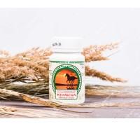 Продукт кисломолочный сухой «КуЭМсил» Тибетское крыло, таблетки, 60 шт
