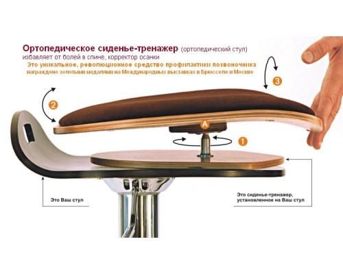 Сиденье тренажер Толстунова - Спина 'ОК' (эконом)